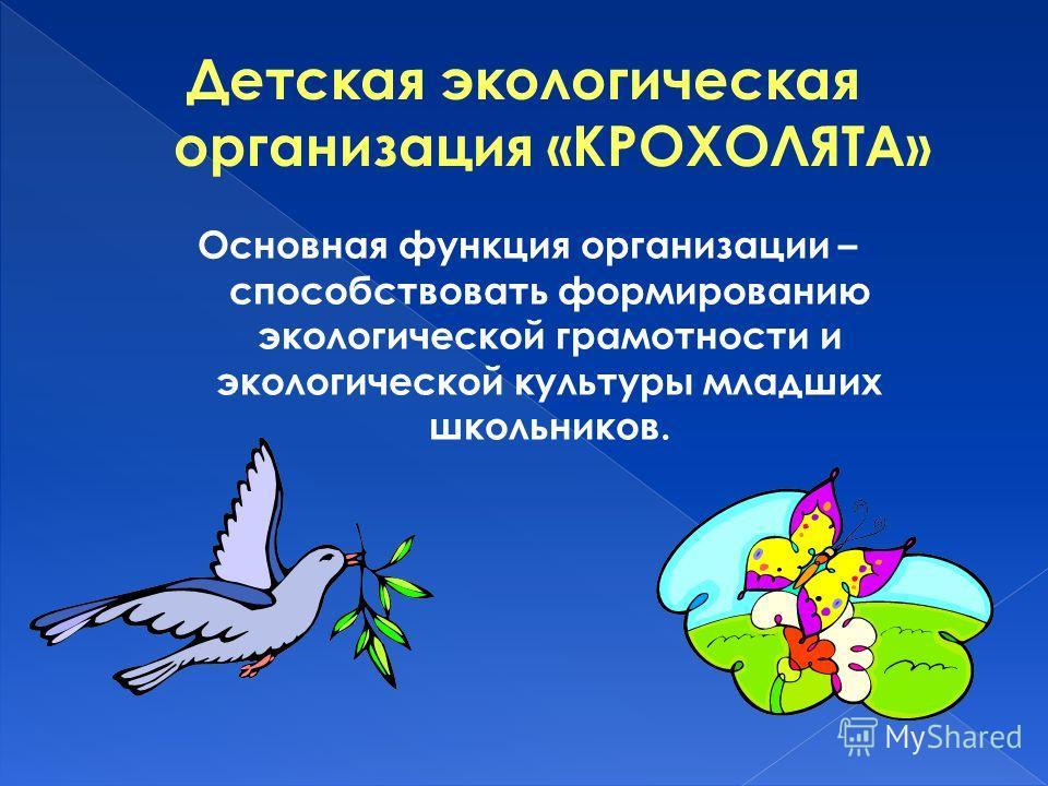 Основная функция организации – способствовать формированию экологической грамотности и экологической культуры младших школьников.