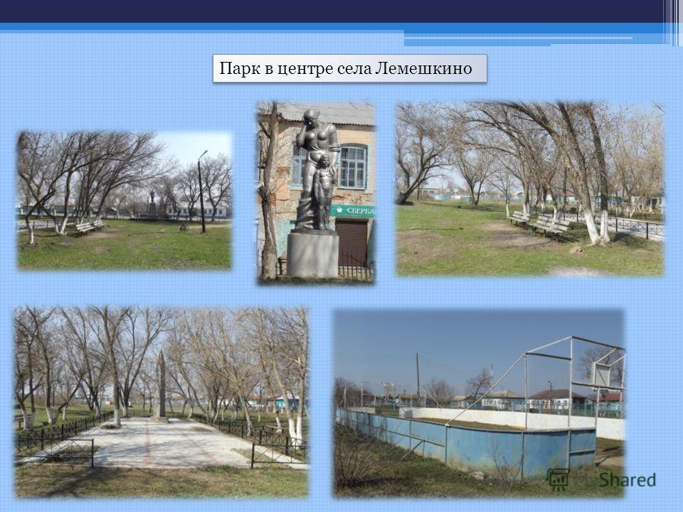 Парк в центре села Лемешкино