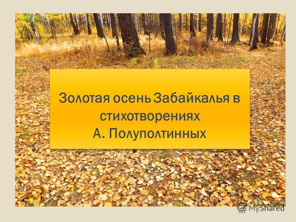 Золотая осень Забайкалья в стихотворениях А. Полуполтинных Золотая осень Забайкалья в стихотворениях А. Полуполтинных