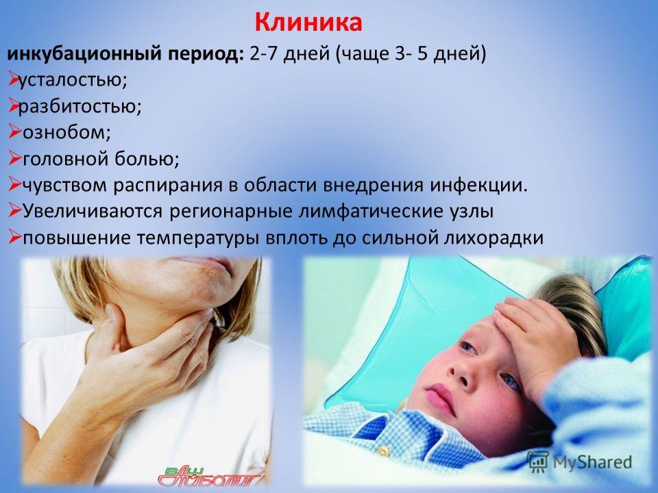 Клиника инкубационный период: 2-7 дней (чаще 3- 5 дней) усталостью; разбитостью; ознобом; головной болью; чувством распирания в области внедрения инфекции. Увеличиваются регионарные лимфатические узлы повышение температуры вплоть до сильной лихорадки