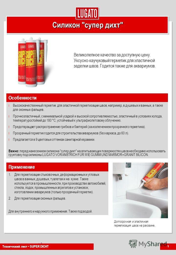 Company Presentation Nr. 0 PG-NH 1/2011 Силикон