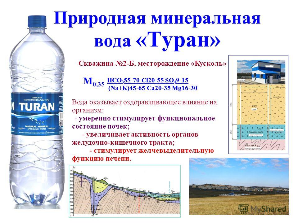 М 0,25-0,35 HCO 3 55-70 Cl20-55 SO 4 9-15 (Na+K)45-65 Ca20-35 Mg16-30 Природная минеральная вода «Туран» Скважина 2-Б, месторождение «Кусколь» М 0,25-0,35 М 0,35 Вода оказывает оздоравливающее влияние на организм: -- умеренно стимулирует функциональн