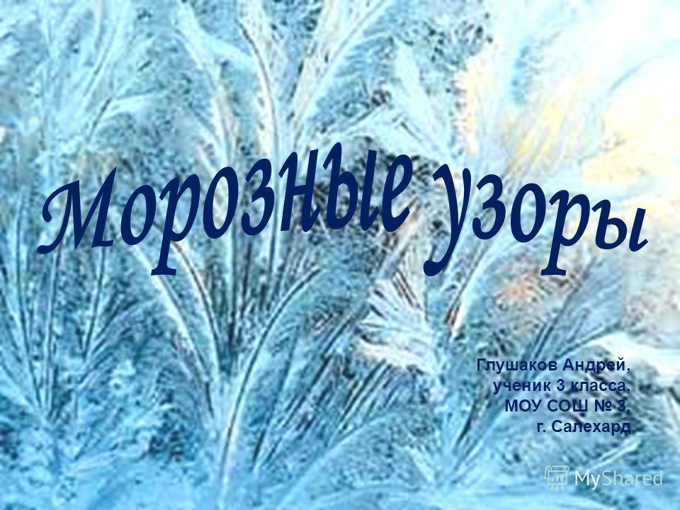 Глушаков Андрей, ученик 3 класса, МОУ СОШ 3, г. Салехард