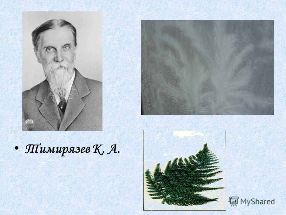 Тимирязев К. А.