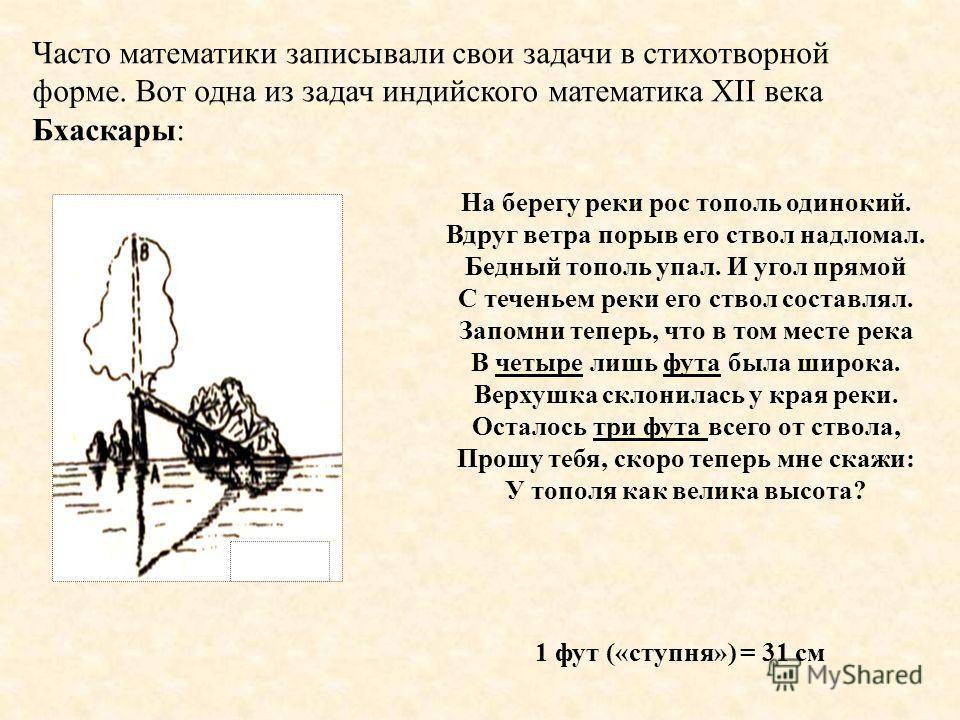 Часто математики записывали свои задачи в стихотворной форме. Вот одна из задач индийского математика XII века Бхаскары: На берегу реки рос тополь одинокий. Вдруг ветра порыв его ствол надломал. Бедный тополь упал. И угол прямой С теченьем реки его с