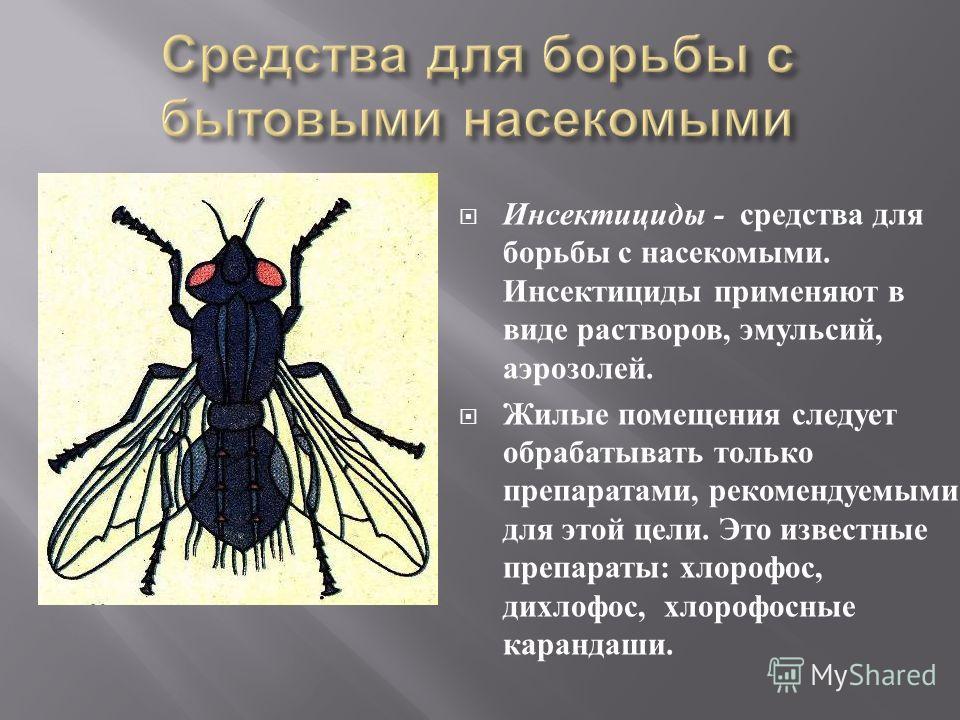 Инсектициды - средства для борьбы с насекомыми. Инсектициды применяют в виде растворов, эмульсий, аэрозолей. Жилые помещения следует обрабатывать только препаратами, рекомендуемыми для этой цели. Это известные препараты : хлорофос, дихлофос, хлорофос