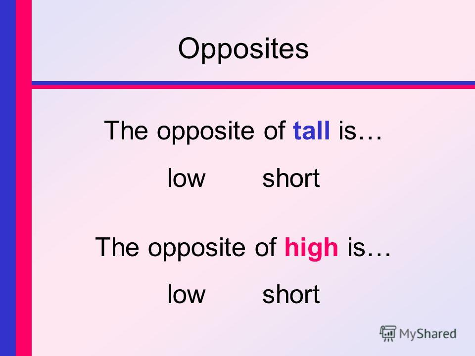 Opposites The opposite of tall is… lowshort The opposite of high is… lowshort