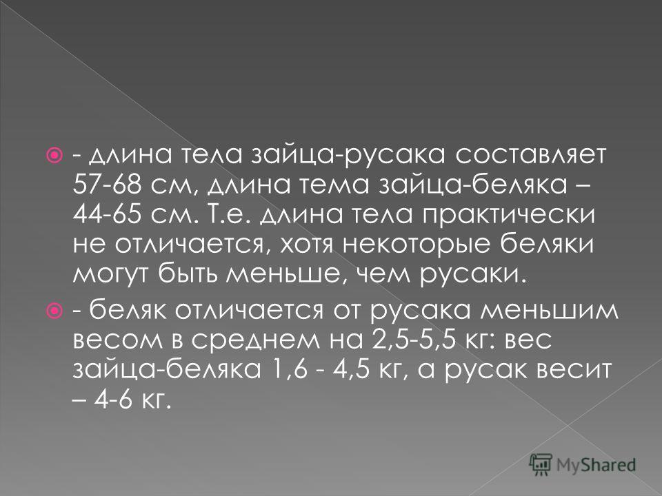 - длина тела зайца-русака составляет 57-68 см, длина тема зайца-беляка – 44-65 см. Т.е. длина тела практически не отличается, хотя некоторые беляки могут быть меньше, чем русаки. - беляк отличается от русака меньшим весом в среднем на 2,5-5,5 кг: вес