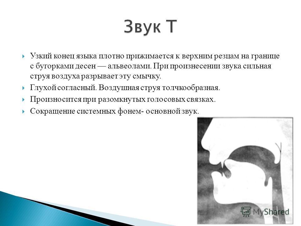 Узкий конец языка плотно прижимается к верхним резцам на границе с бугорками десен альвеолами. При произнесении звука сильная струя воздуха разрывает эту смычку. Глухой согласный. Воздушная струя толчкообразная. Произносится при разомкнутых голосовых