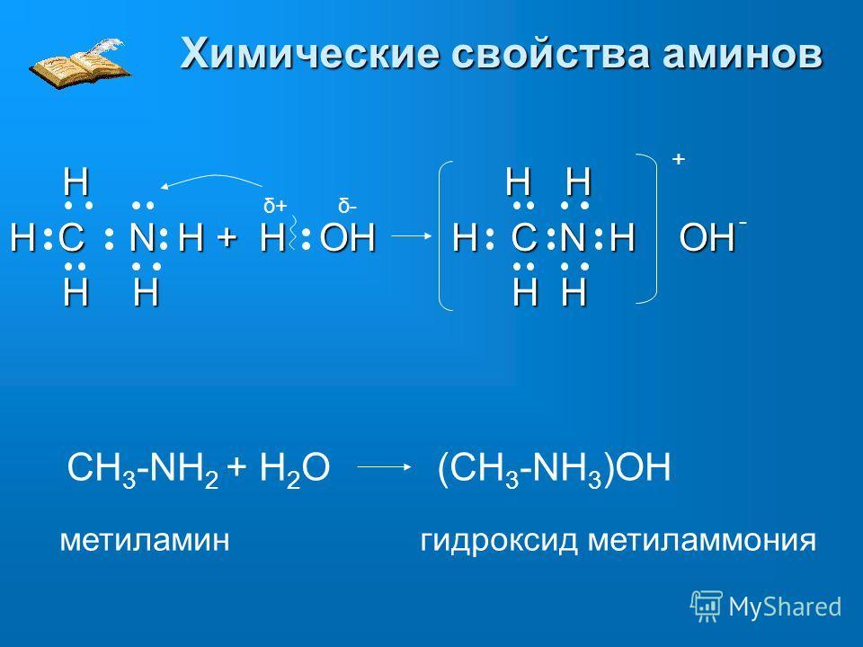 Химические свойства аминов δ+δ+δ-δ- - H H H H H H H C N H + H OH H C N H OH H H H H H H H H + CH 3 -NH 2 + H 2 O (CH 3 -NH 3 )OH метиламингидроксид метиламмония