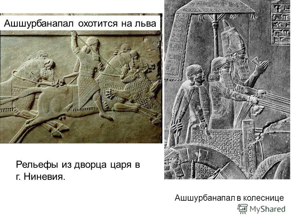 Ашшурбанапал охотится на льва Ашшурбанапал в колеснице Рельефы из дворца царя в г. Ниневия.