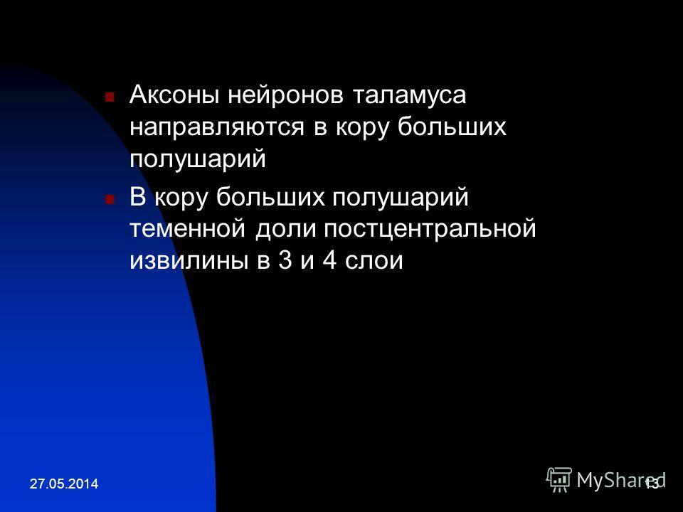 27.05.201413 Аксоны нейронов таламуса направляются в кору больших полушарий В кору больших полушарий теменной доли постцентральной извилины в 3 и 4 слои