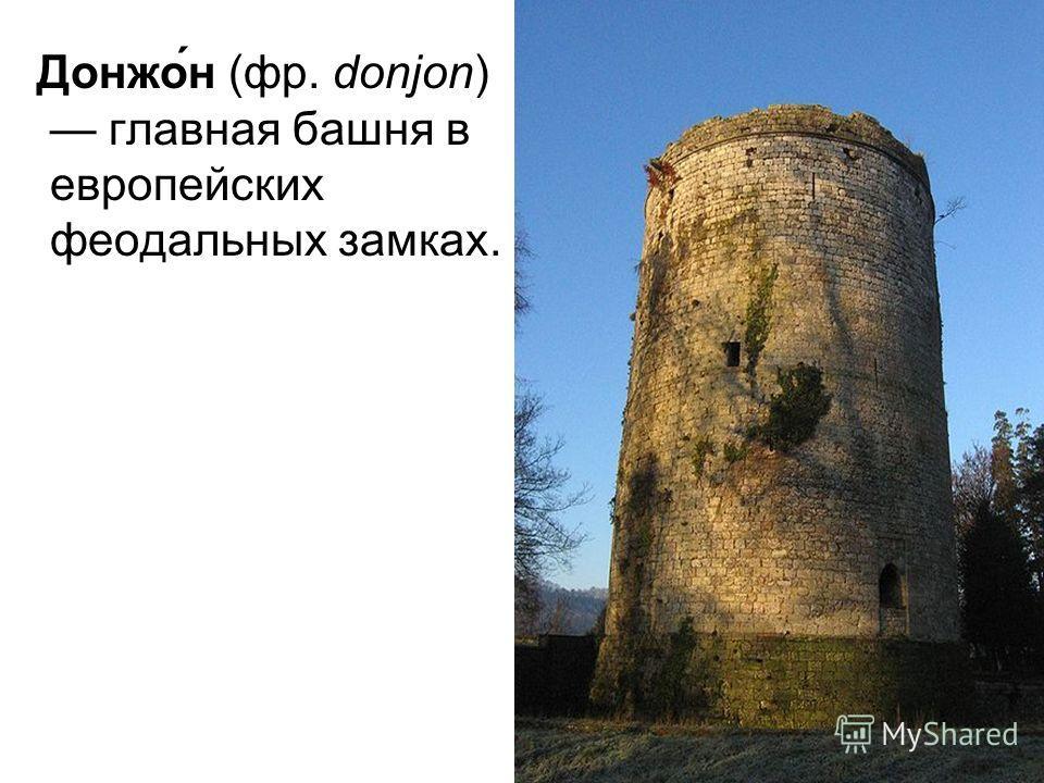 Донжо́н (фр. donjon) главная башня в европейских феодальных замках.