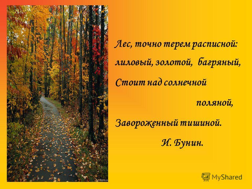 Лес, точно терем расписной: лиловый, золотой, багряный, Стоит над солнечной поляной, Завороженный тишиной. И. Бунин.