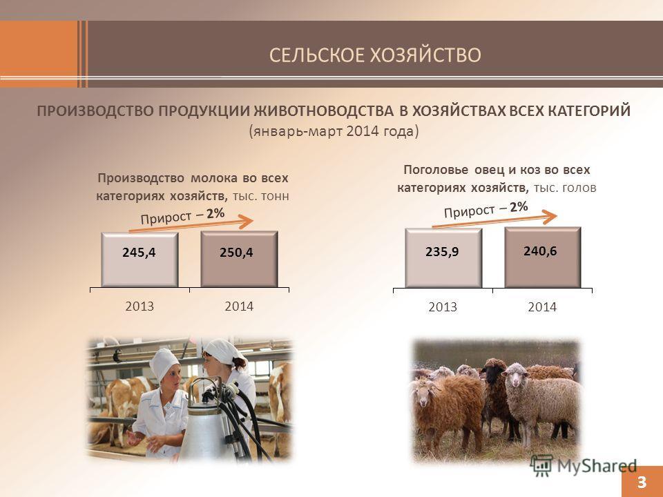 СЕЛЬСКОЕ ХОЗЯЙСТВО ПРОИЗВОДСТВО ПРОДУКЦИИ ЖИВОТНОВОДСТВА В ХОЗЯЙСТВАХ ВСЕХ КАТЕГОРИЙ (январь-март 2014 года) 3 Поголовье овец и коз во всех категориях хозяйств, тыс. голов Производство молока во всех категориях хозяйств, тыс. тонн