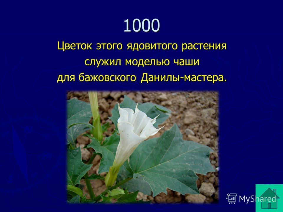 Цветок этого ядовитого растения служил моделью чаши для бажовского Данилы-мастера. 1000