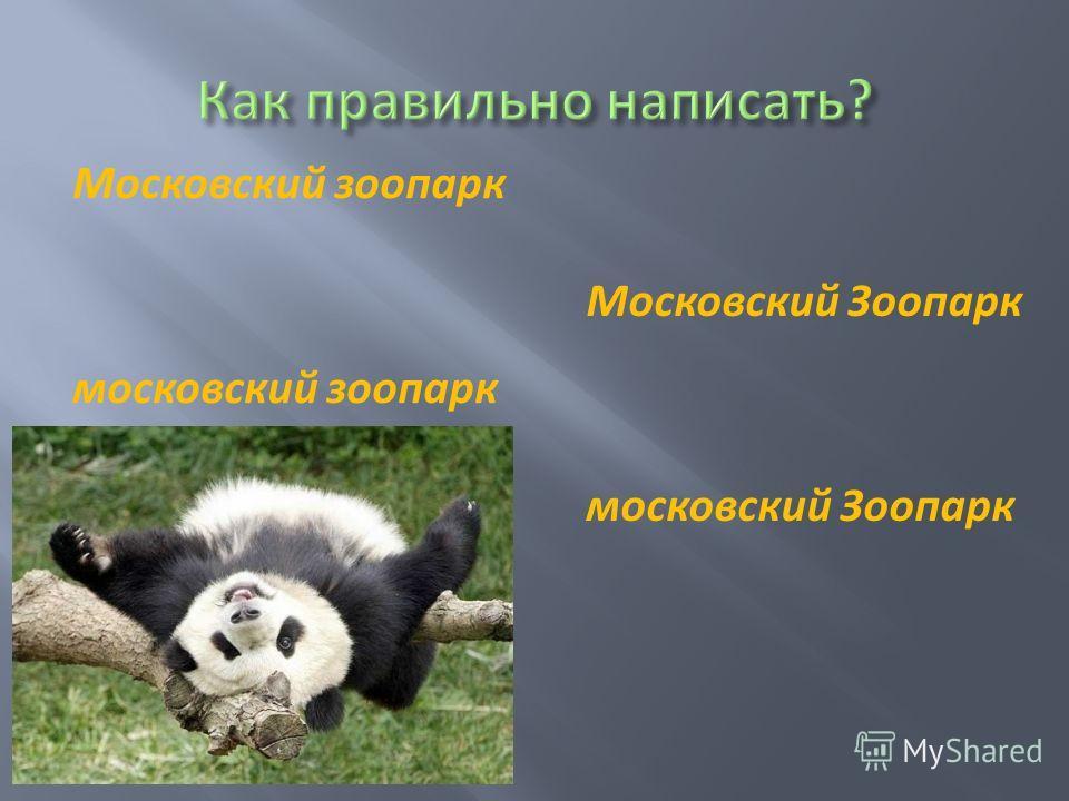 Московский зоопарк московский зоопарк Московский Зоопарк московский Зоопарк