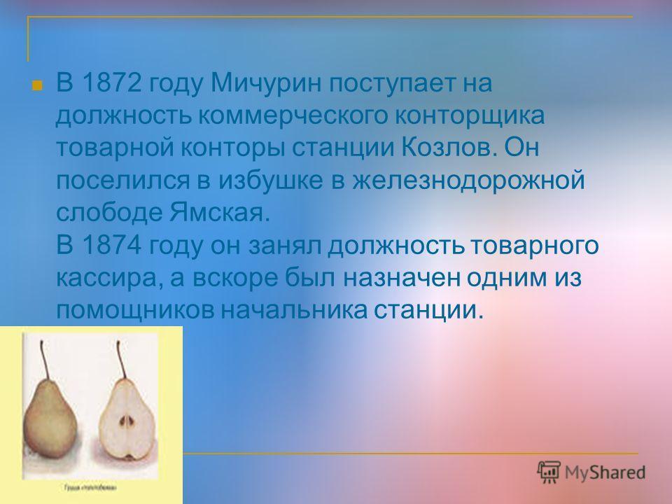 В 1872 году Мичурин поступает на должность коммерческого конторщика товарной конторы станции Козлов. Он поселился в избушке в железнодорожной слободе Ямская. В 1874 году он занял должность товарного кассира, а вскоре был назначен одним из помощников
