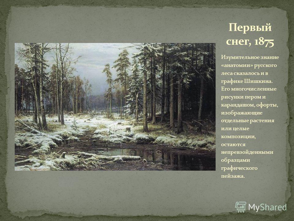 Изумительное знание «анатомии» русского леса сказалось и в графике Шишкина. Его многочисленные рисунки пером и карандашом, офорты, изображающие отдельные растения или целые композиции, остаются непревзойденными образцами графического пейзажа.