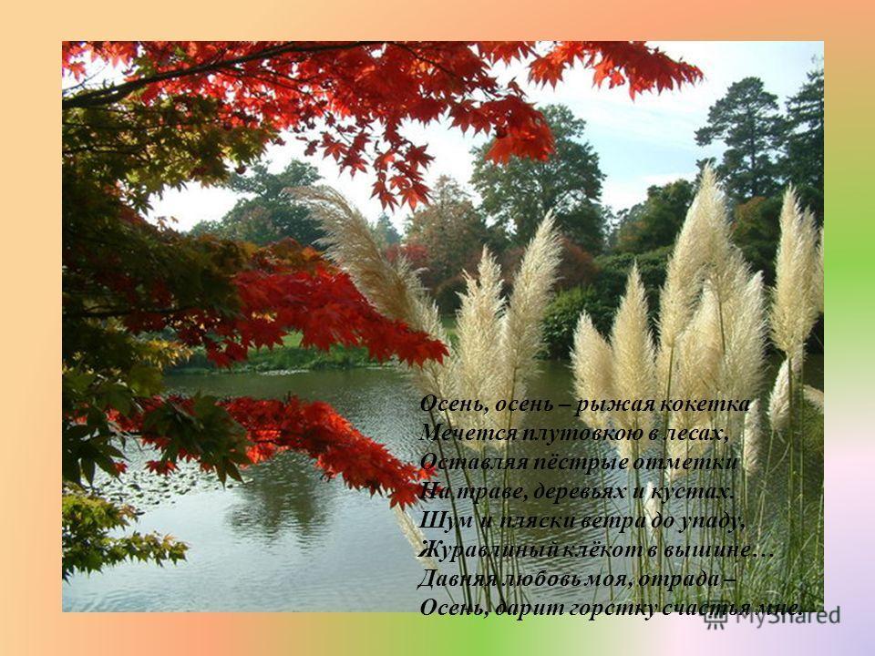 Осень, осень – рыжая кокетка Мечется плутовкою в лесах, Оставляя пёстрые отметки На траве, деревьях и кустах. Шум и пляски ветра до упаду, Журавлиный клёкот в вышине … Давняя любовь моя, отрада – Осень, дарит горстку счастья мне.
