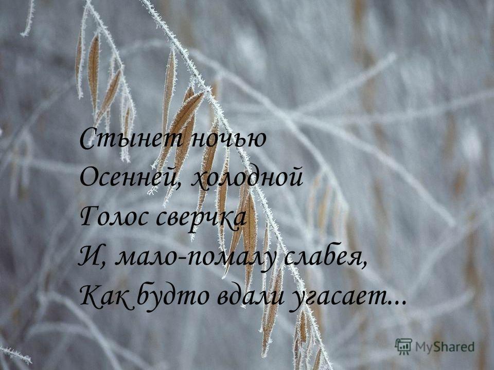Стынет ночью Осенней, холодной Голос сверчка И, мало-помалу слабея, Как будто вдали угасает...
