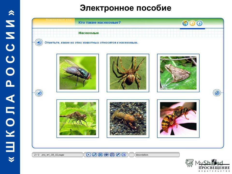 « Ш К О Л А Р О С С И И » Электронное пособие
