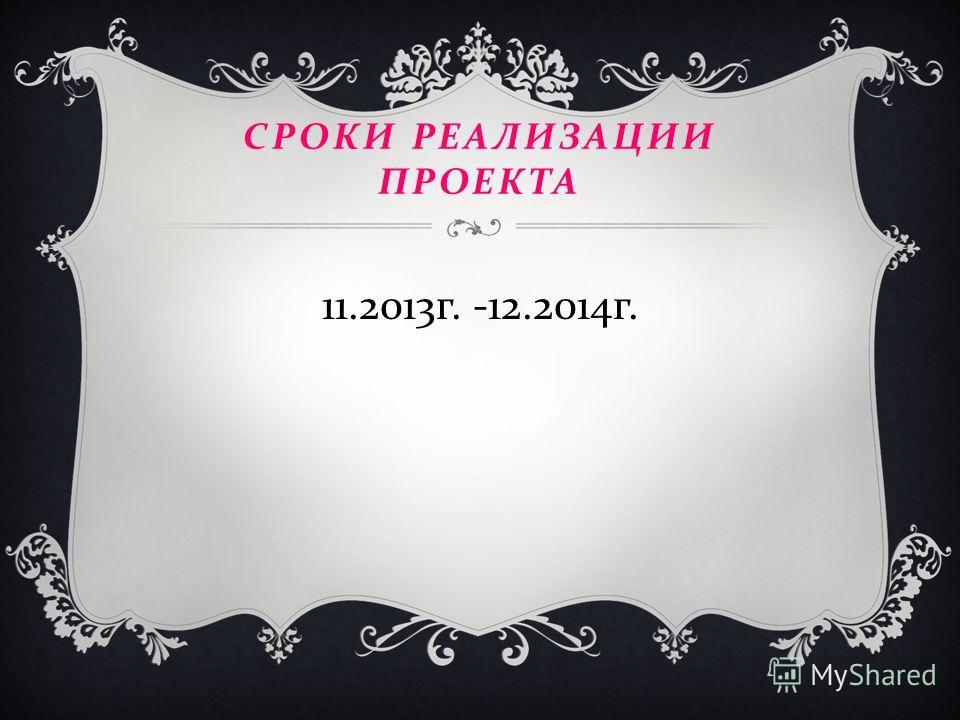 СРОКИ РЕАЛИЗАЦИИ ПРОЕКТА 11.2013 г. -12.2014 г.
