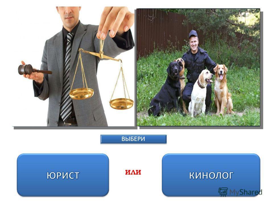 Содержание труда: толкование и применение законов, обеспечение законности в деятельности государственных органов, предприятий, учреждений, должностных лиц и граждан, вскрытие и установление фактов правонарушений, определение меры ответственности и на