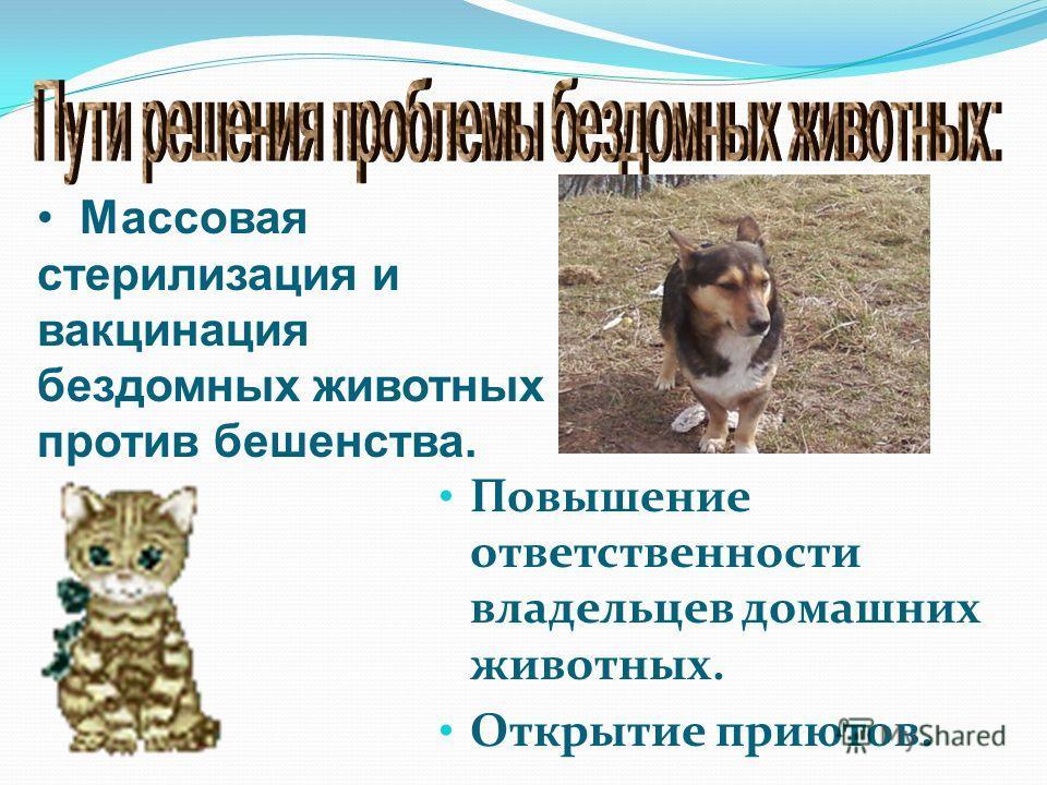 Повышение ответственности владельцев домашних животных. Открытие приютов. Массовая стерилизация и вакцинация бездомных животных против бешенства.