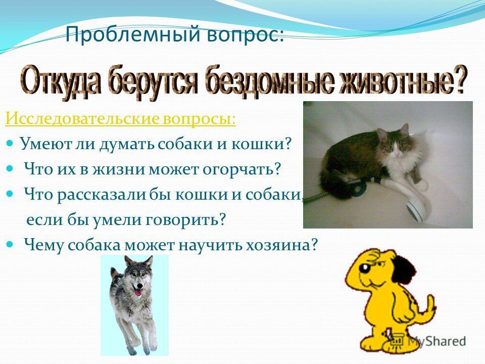 Проблемный вопрос: Исследовательские вопросы: Умеют ли думать собаки и кошки? Что их в жизни может огорчать? Что рассказали бы кошки и собаки, если бы умели говорить? Чему собака может научить хозяина?
