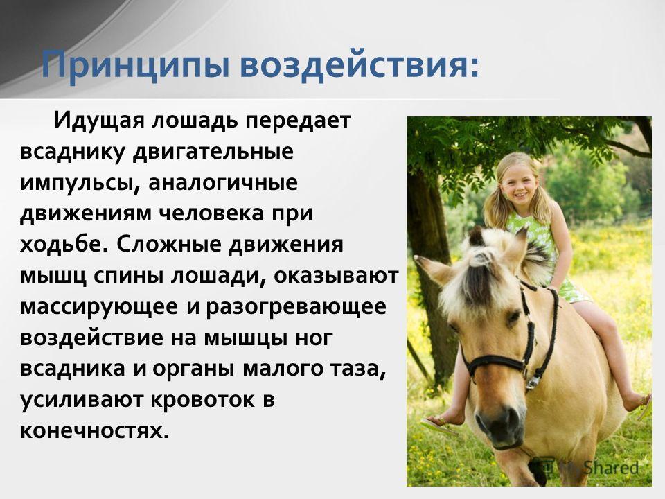 Идущая лошадь передает всаднику двигательные импульсы, аналогичные движениям человека при ходьбе. Сложные движения мышц спины лошади, оказывают массирующее и разогревающее воздействие на мышцы ног всадника и органы малого таза, усиливают кровоток в к