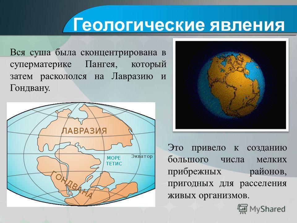 Вся суша была сконцентрирована в суперматерике Пангея, который затем раскололся на Лавразию и Гондвану. Геологические явления Это привело к созданию большого числа мелких прибрежных районов, пригодных для расселения живых организмов.