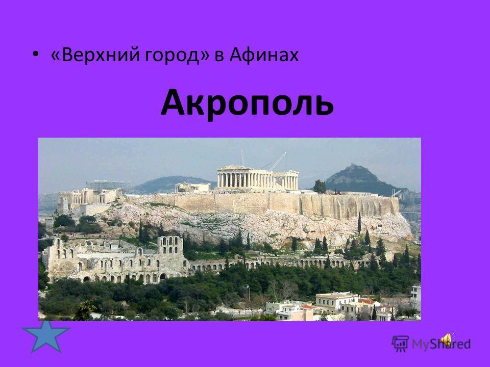 Кто из древнегреческих учёных разделил все научные знания по отдельным наукам, которым дал название: Ботаника, физика. Аристотель