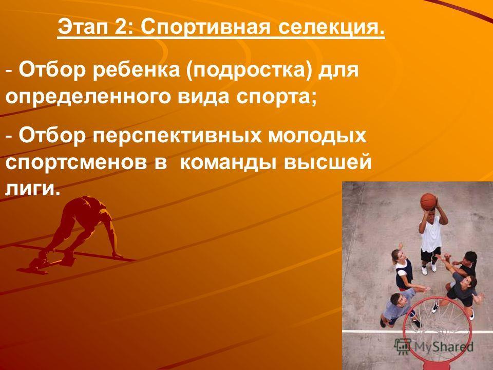 Этап 2: Спортивная селекция. - Отбор ребенка (подростка) для определенного вида спорта; - Отбор перспективных молодых спортсменов в команды высшей лиги.