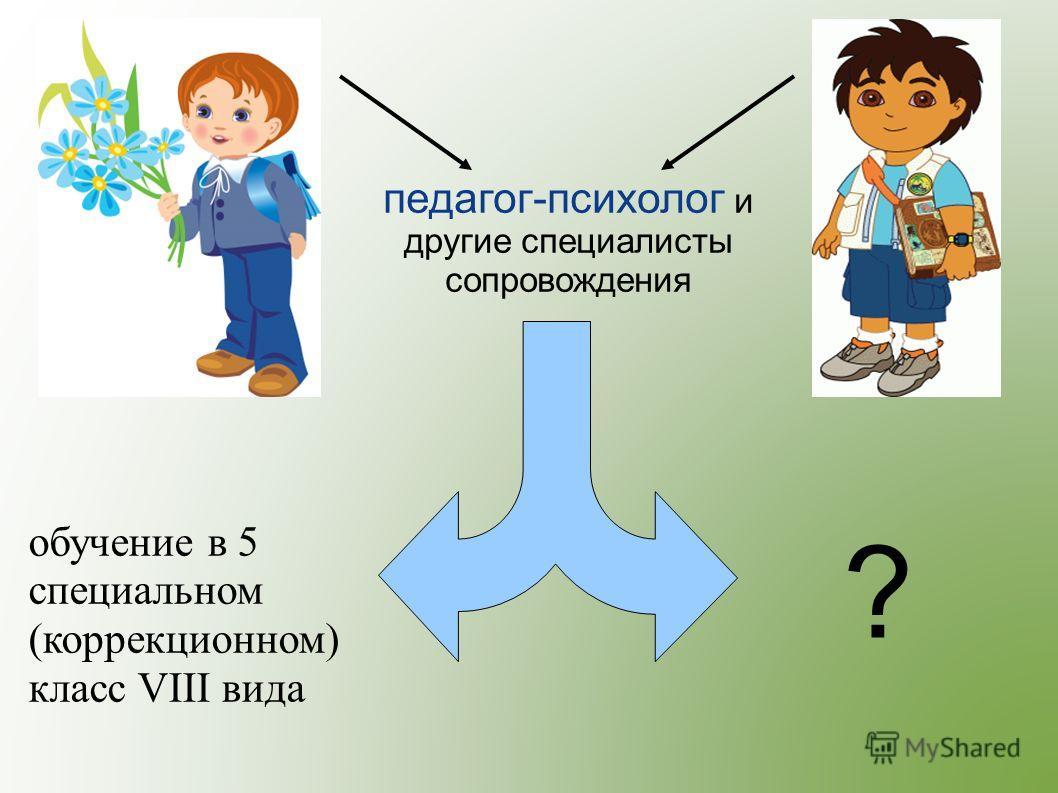 педагог-психолог и другие специалисты сопровождения ? обучение в 5 специальном (коррекционном) класс VIII вида