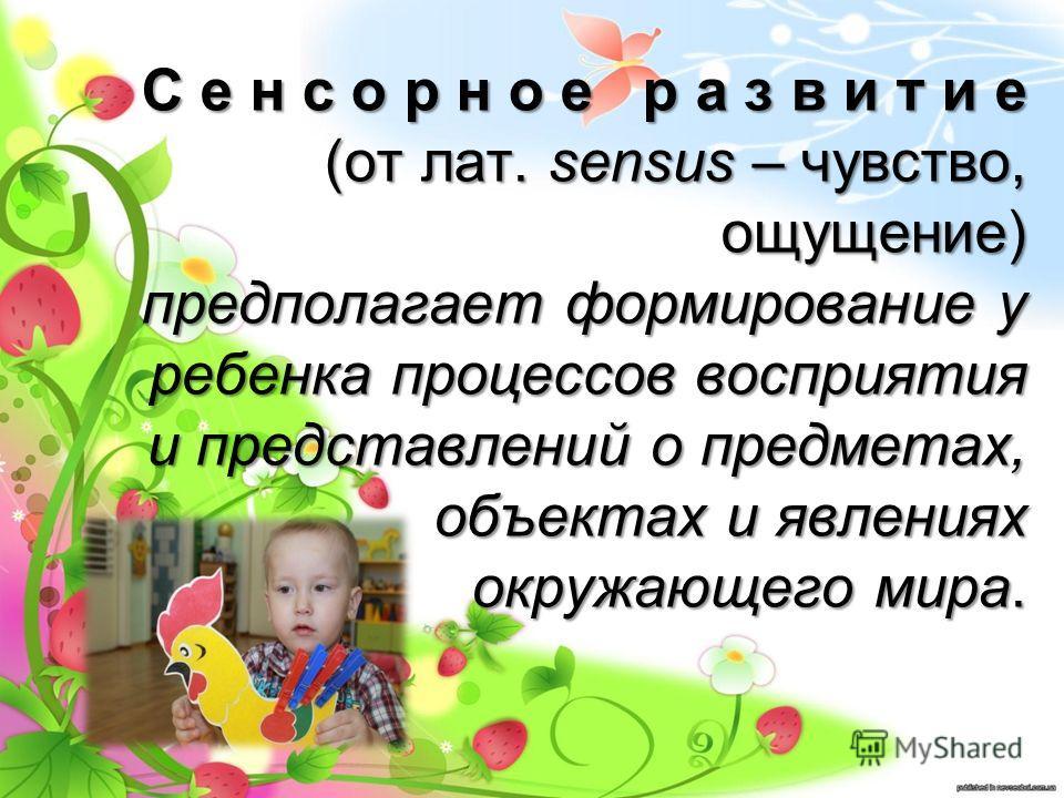 С е н с о р н о е р а з в и т и е (от лат. sensus – чувство, ощущение) предполагает формирование у ребенка процессов восприятия и представлений о предметах, объектах и явлениях окружающего мира.