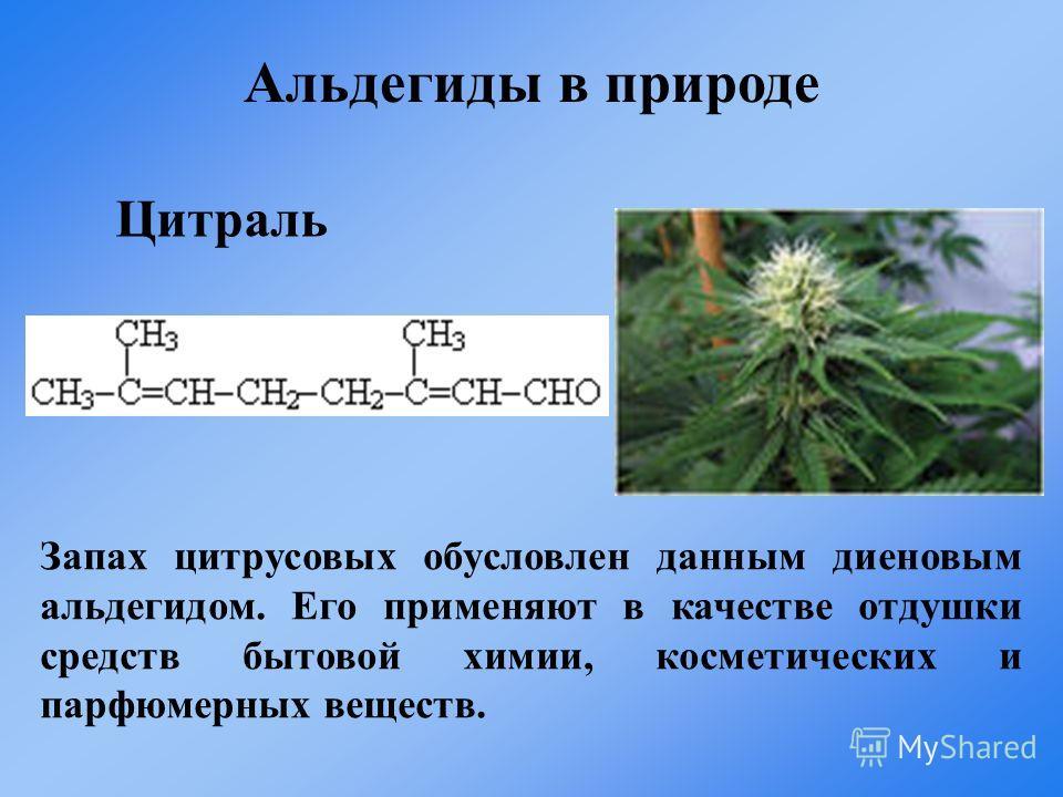 Запах цитрусовых обусловлен данным диеновым альдегидом. Его применяют в качестве отдушки средств бытовой химии, косметических и парфюмерных веществ. Цитраль Альдегиды в природе