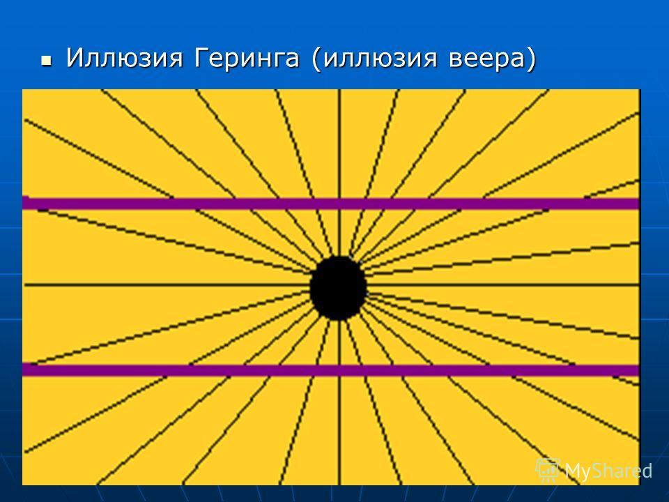 Иллюзия Геринга (иллюзия веера) Иллюзия Геринга (иллюзия веера)