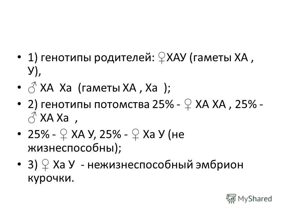 1) генотипы родителей: ХАУ (гаметы ХА, У), ХА Ха (гаметы ХА, Ха ); 2) генотипы потомства 25% - ХА ХА, 25% - ХА Ха, 25% - ХА У, 25% - Ха У (не жизнеспособны); 3) Ха У - нежизнеспособный эмбрион курочки.