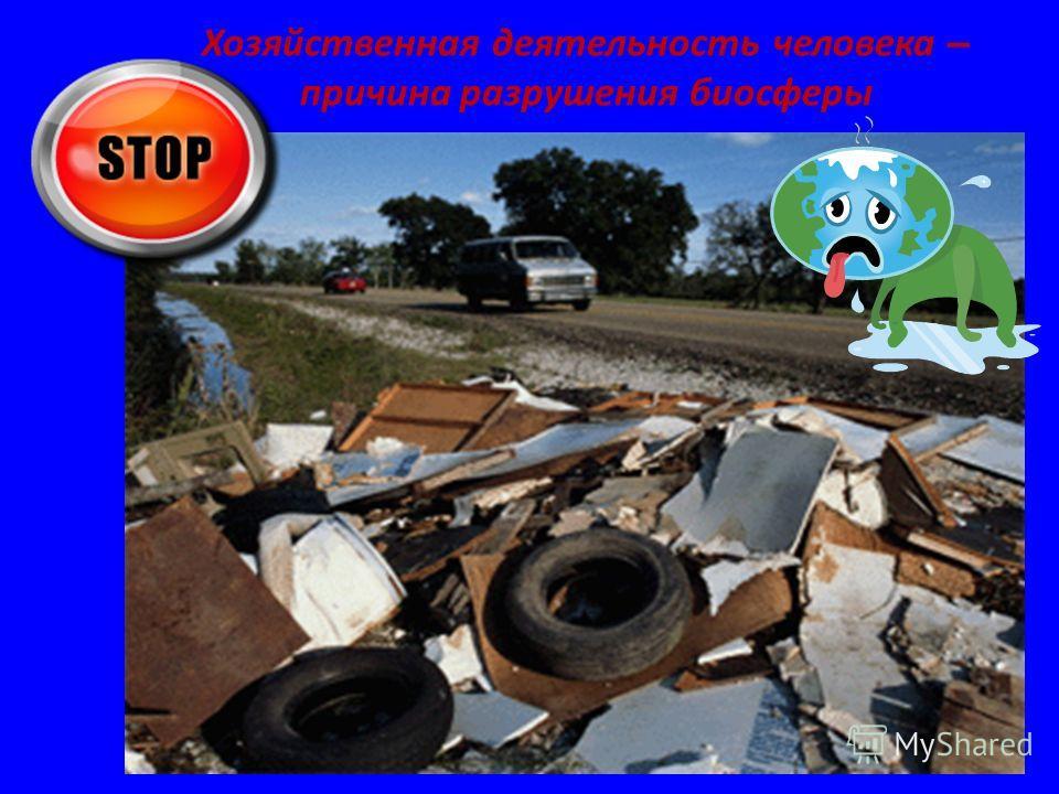 Хозяйственная деятельность человека – причина разрушения биосферы