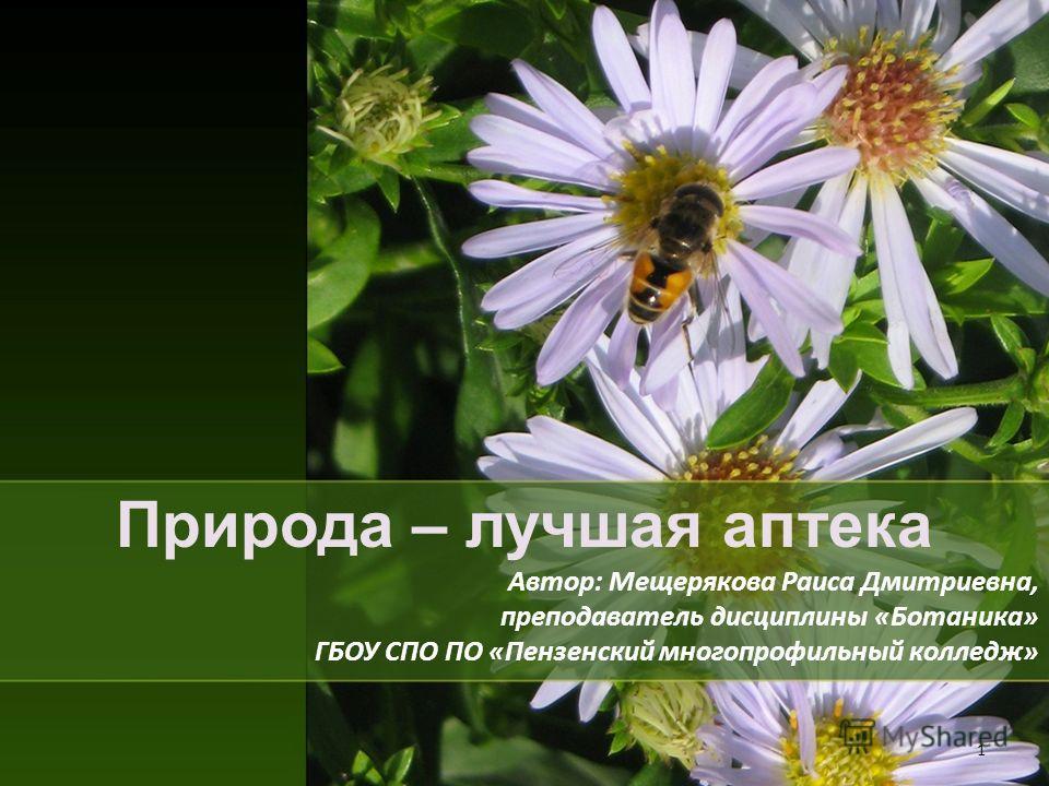Природа – лучшая аптека Автор: Мещерякова Раиса Дмитриевна, преподаватель дисциплины «Ботаника» ГБОУ СПО ПО «Пензенский многопрофильный колледж» 1