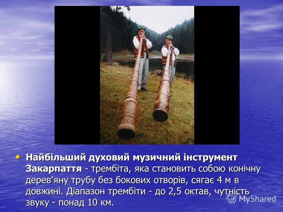 Найбільший духовий музичний інструмент Закарпаття - трембіта, яка становить собою конічну дерев'яну трубу без бокових отворів, сягає 4 м в довжині. Діапазон трембіти - до 2,5 октав, чутність звуку - понад 10 км. Найбільший духовий музичний інструмент