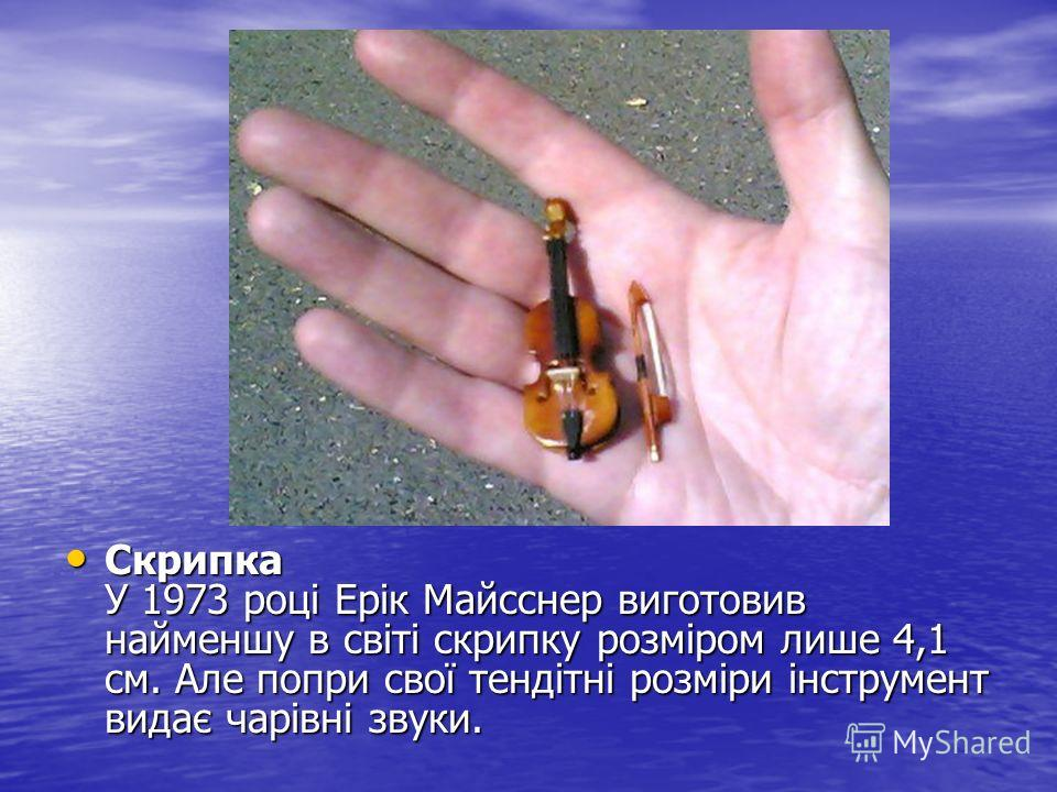 Скрипка У 1973 році Ерік Майсснер виготовив найменшу в світі скрипку розміром лише 4,1 см. Але попри свої тендітні розміри інструмент видає чарівні звуки. Скрипка У 1973 році Ерік Майсснер виготовив найменшу в світі скрипку розміром лише 4,1 см. Але