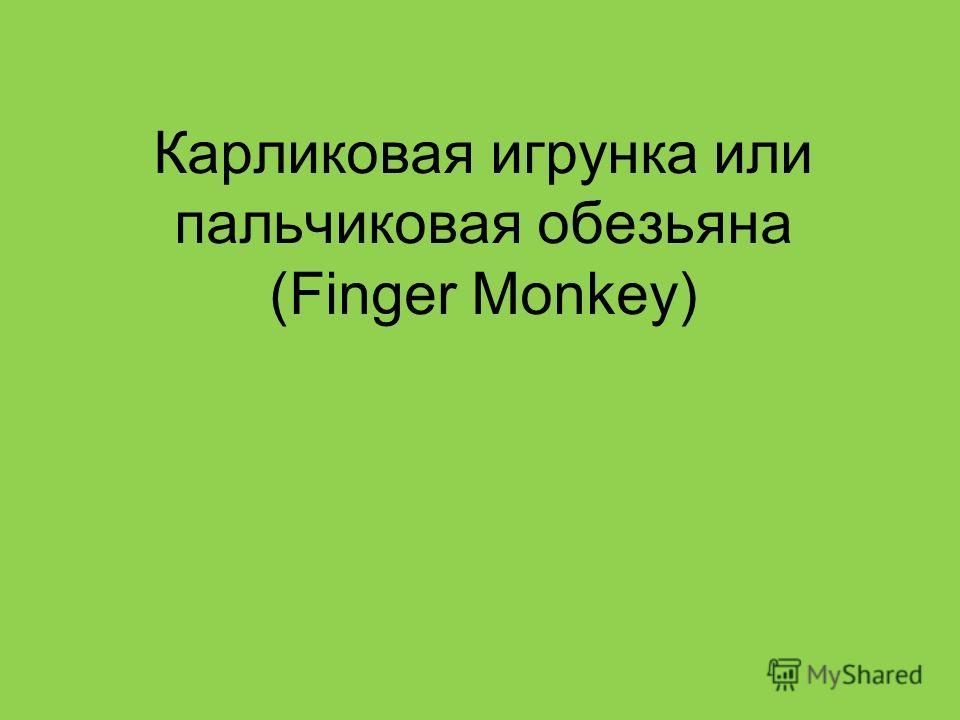 Карликовая игрунка или пальчиковая обезьяна (Finger Monkey)