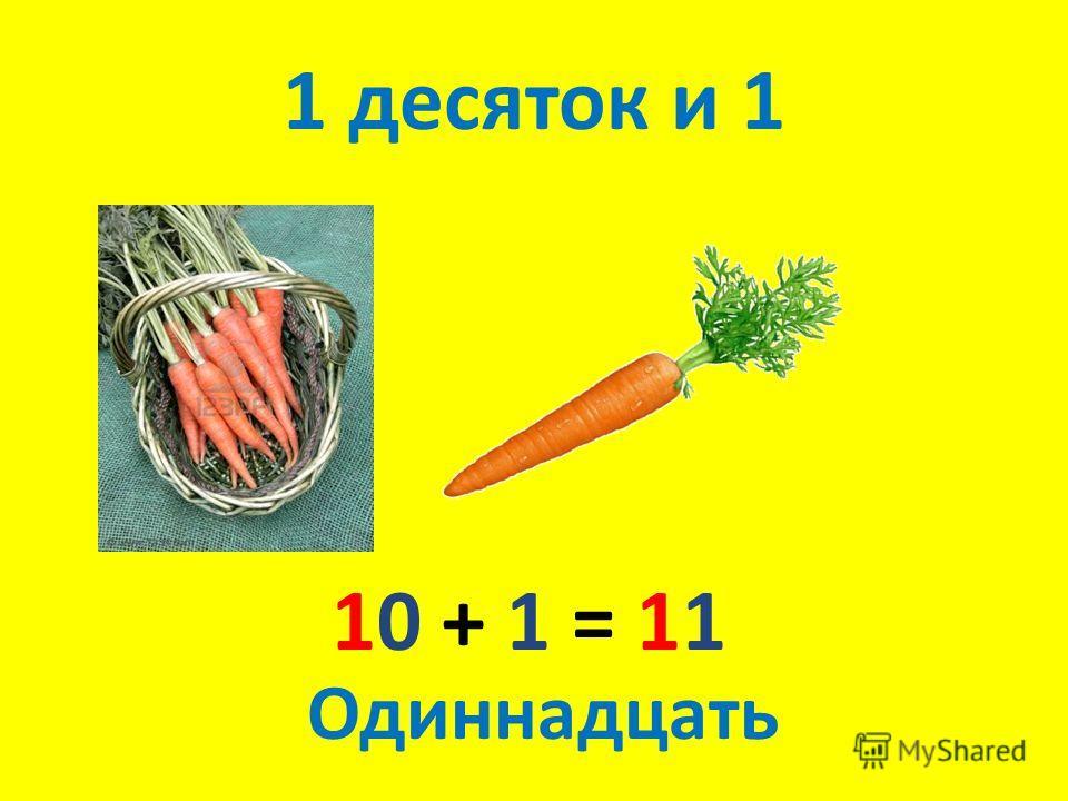 1 десяток и 1 10 + 1 = 11 Одиннадцать