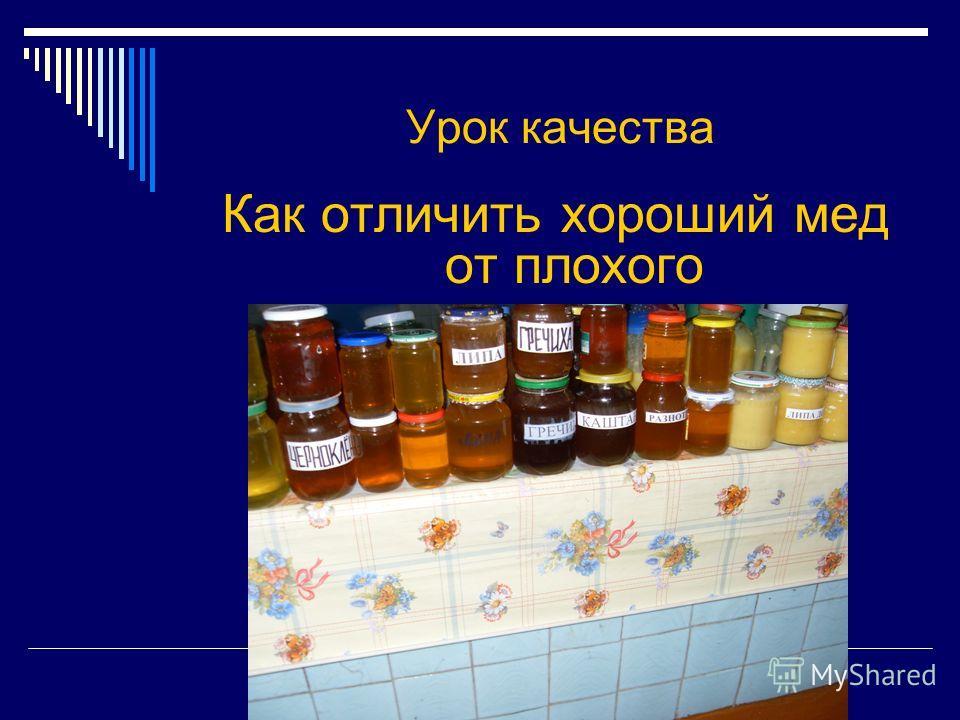 Урок качества Как отличить хороший мед от плохого