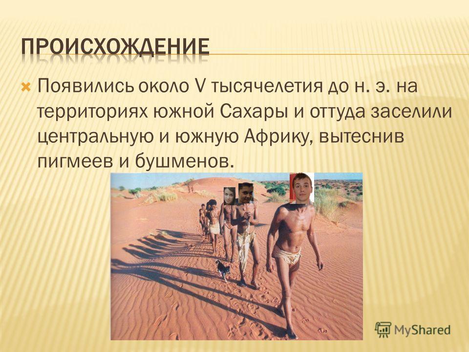 Появились около V тысячелетия до н. э. на территориях южной Сахары и оттуда заселили центральную и южную Африку, вытеснив пигмеев и бушменов.