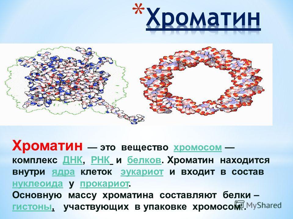 Хроматин это вещество хромосом комплекс ДНК, РНК и белков. Хроматин находится внутри ядра клеток эукариот и входит в состав нуклеоида у прокариот. Основную массу хроматина составляют белки – гистоны, участвующих в упаковке хромосом.хромосом ДНКРНКбел