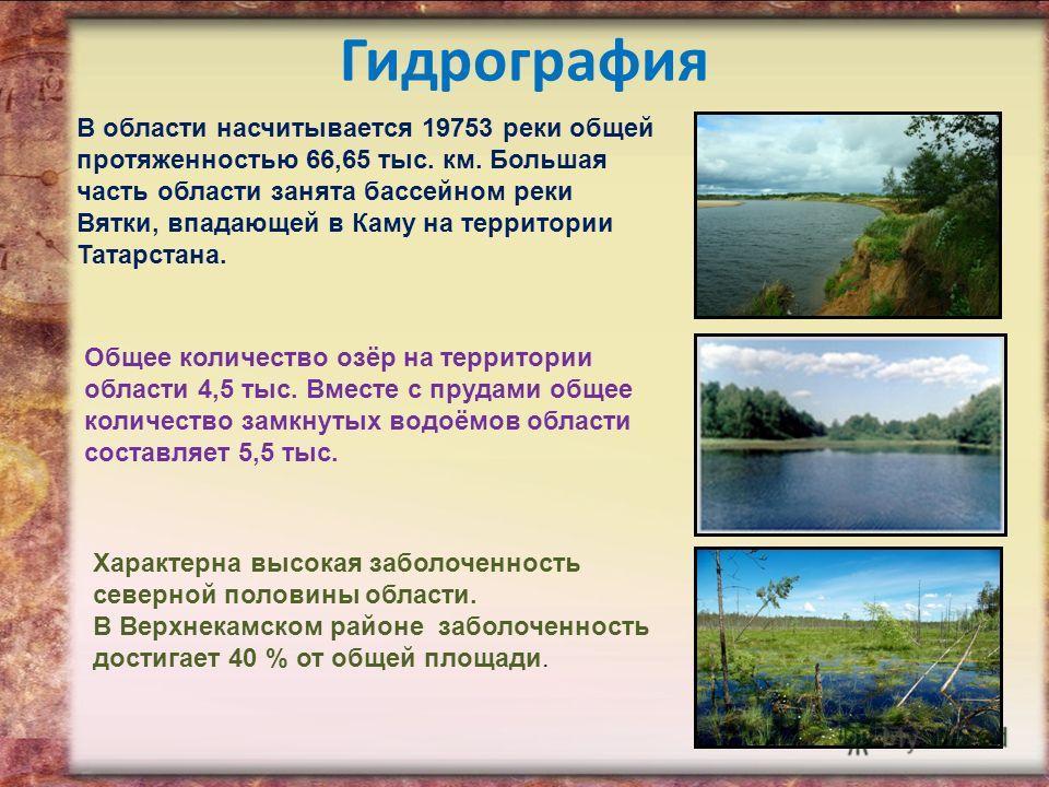 Гидрография В области насчитывается 19753 реки общей протяженностью 66,65 тыс. км. Большая часть области занята бассейном реки Вятки, впадающей в Каму на территории Татарстана. Общее количество озёр на территории области 4,5 тыс. Вместе с прудами общ