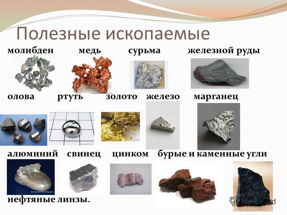 Полезные ископаемые молибден медь сурьма железной руды олова ртуть золото железо марганец алюминий свинец цинком бурые и каменные угли нефтяные линзы.